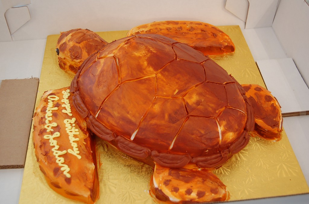 Birthday-Cakes-Design-Ideas-by-mydesignbeauty-11