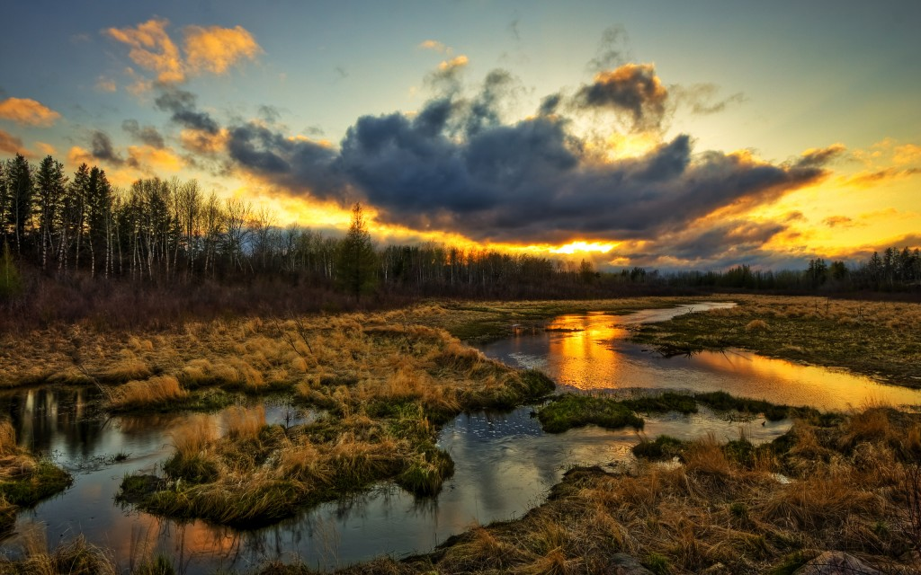 Most Beautiful and Amazing Nature HD Wallpapers by mydesignbeauty.com
